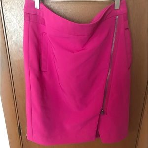 NWT Cute Zipper Back Skirt